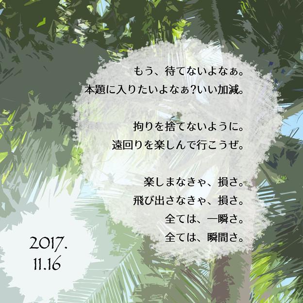 04 2017.11.16