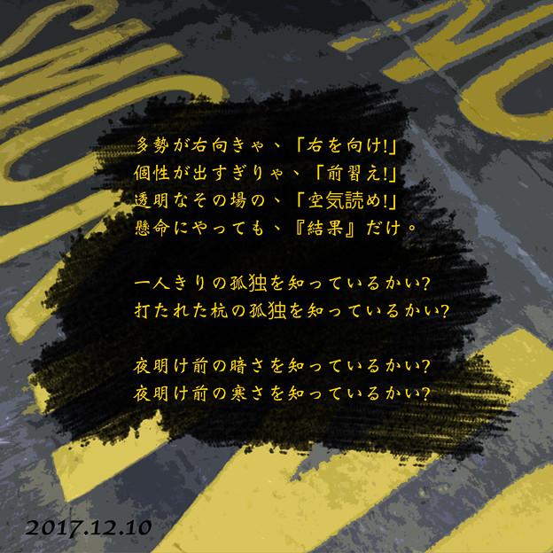 08 2017.12.10 (小品)
