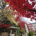 Photos: IMGP3498光市、伊藤公資料館、産湯の井戸