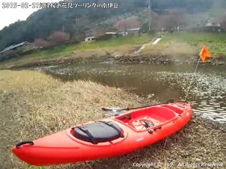 2015-02-21河津桜お花見ツーリングin南伊豆 (7)