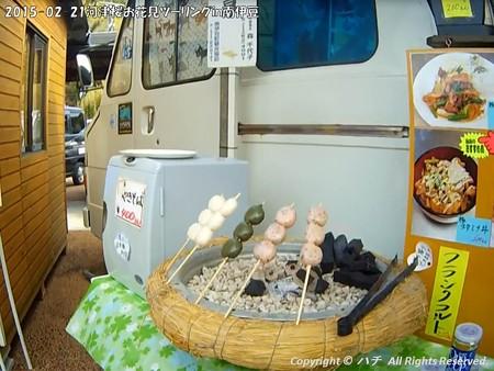 2015-02-21河津桜お花見ツーリングin南伊豆 (9)
