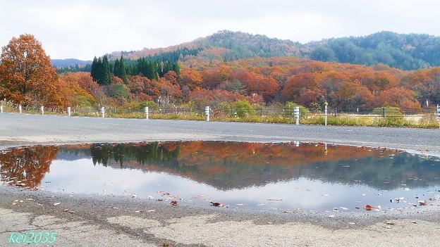写真: 恩原湖の秋