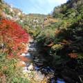 豪溪の紅葉