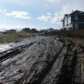 Photos: 都会では泥濘は死語とだとか