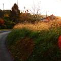 写真: 益子の路地