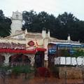 Photos: 雨に濡れて