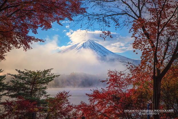 紅葉から覗く富士