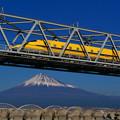 写真: ドクターイエローと富士山