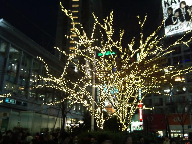Photos: 2010-12-12 16_55_10