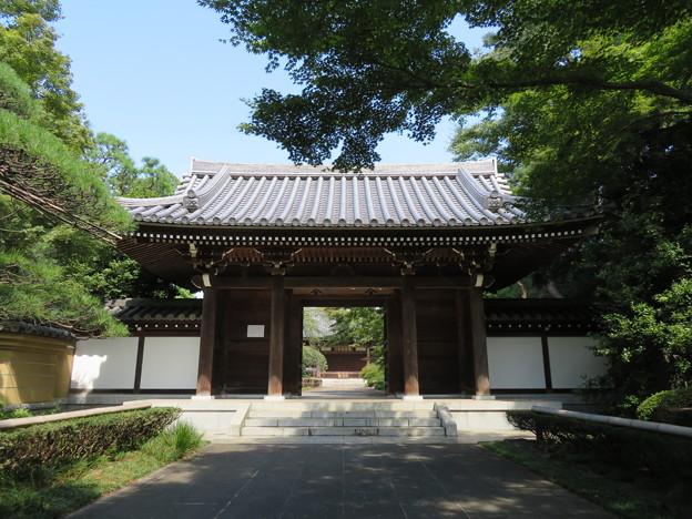 観泉寺(杉並区)