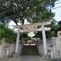 Photos: 幡ヶ谷氷川神社(渋谷区本町)