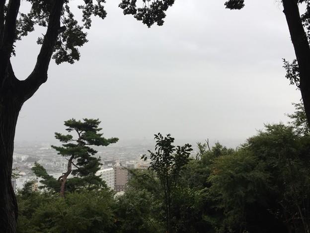 高幡城/高幡不動尊(日野市)眺望
