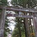 日光東照宮(栃木県)石鳥居