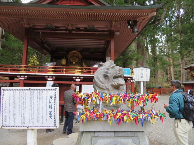 日光二荒山神社(栃木県)神楽殿・狛犬