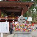 写真: 日光二荒山神社(栃木県)神楽殿・狛犬