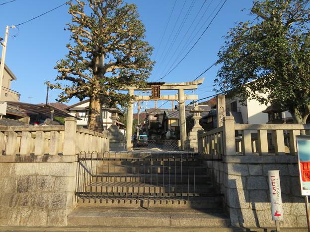 八大神社(左京区)一の鳥居