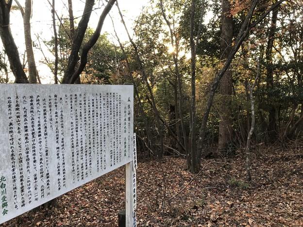 Photos: 将軍山城(左京区)先は腰郭?