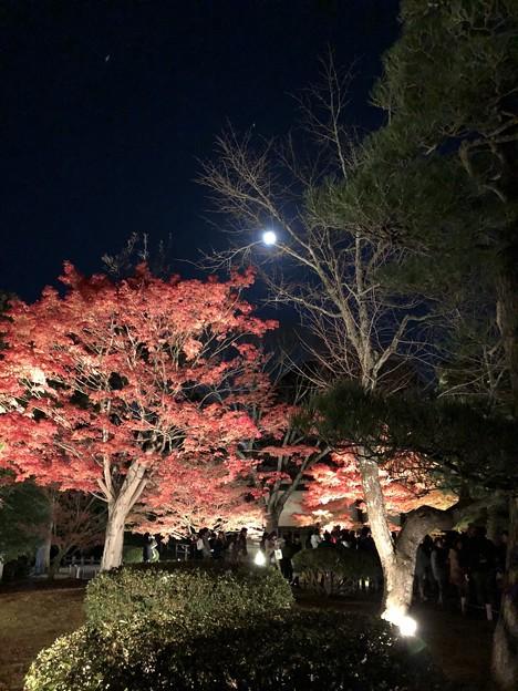 17.12.03.朝日山平等院(宇治市)