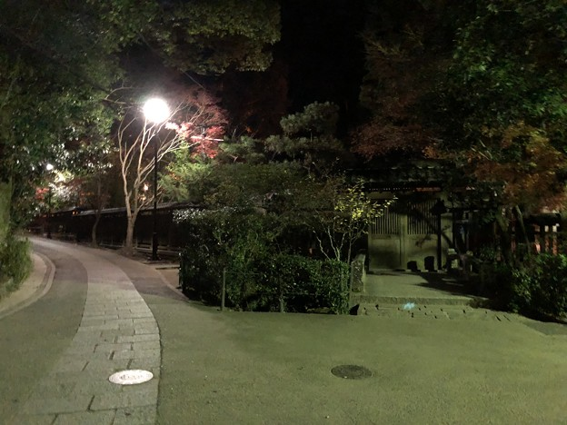 さわらびの道(宇治市)