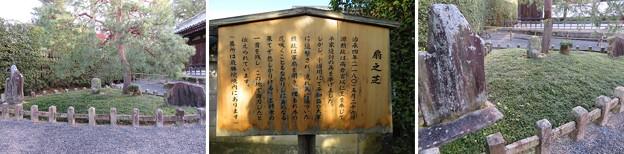 朝日山平等院(宇治市)扇の芝