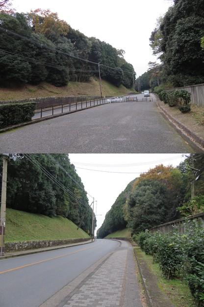 木幡山伏見城(伏見区)前方、真田信幸屋敷?