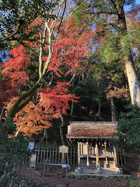 松尾大社(西京区)北末社と紅葉