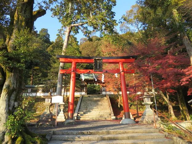 月読神社(西京区)鳥居