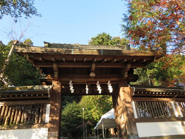 月読神社(西京区)神門