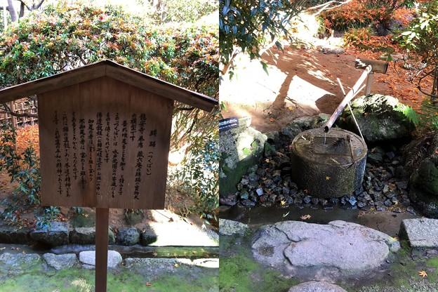 龍安寺(右京区)方丈・蹲踞複製