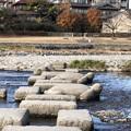 鴨川デルタ(京都市上京区)