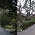 Photos: 三井寺(園城寺。大津市)仁王門・金堂