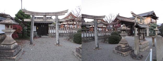 若宮八幡神社(大津市)