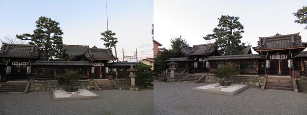 若宮八幡神社(大津市)本殿