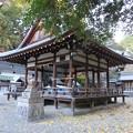 Photos: 鞭嵜八幡宮(草津市)拝殿