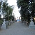 Photos: 鞭嵜八幡宮(草津市)