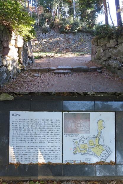 安土城(近江八幡市)伝 黒金門(鉄門)