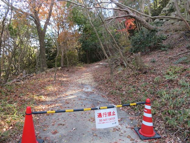 八幡山城(近江八幡市)本丸虎口脇への道