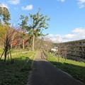 八幡山城屋敷(秀次館。近江八幡市営 八幡公園)