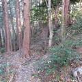 観音寺城(近江八幡市)三井丸
