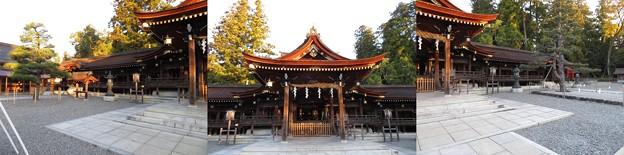 多賀大社(犬上郡多賀町)拝殿・幣殿