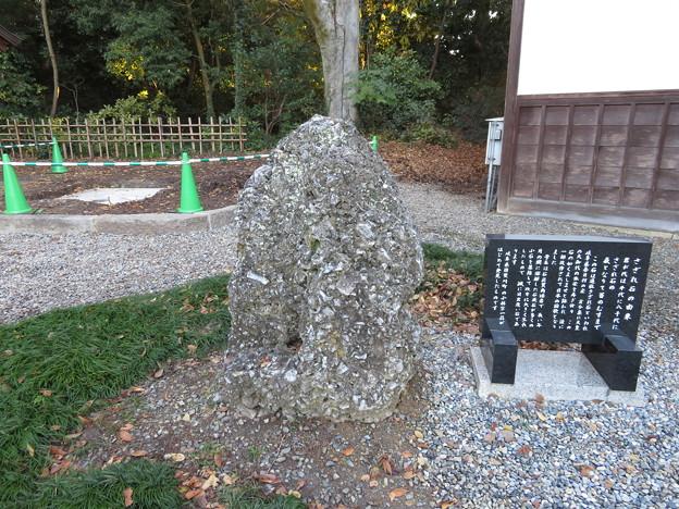 多賀大社(犬上郡多賀町)さざれ石