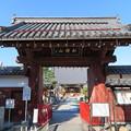 写真: 宗安寺(彦根市)表門
