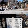Photos: 宗安寺(彦根市)鬼瓦