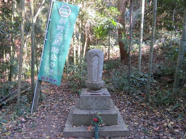 龍潭寺(彦根市)新野左馬助墓