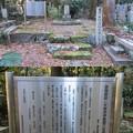 Photos: 龍潭寺(彦根市)井伊直弼生母墓