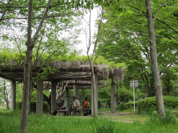 11.05.03.出羽公園(越谷市)