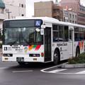 P9174866-e01