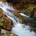 写真: 深山の流れ~