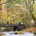 写真: 清流にかかる橋~