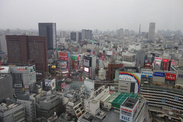 ニコンプラザ新宿 風景